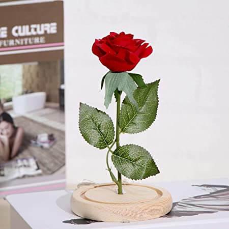 Foto de una rosas roja eterna sin la cupula de cristal
