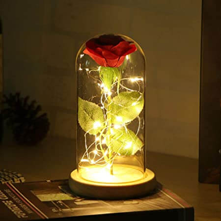 Foto de rosa roja eterna roja en una cupula de cristal iluminada por unos led